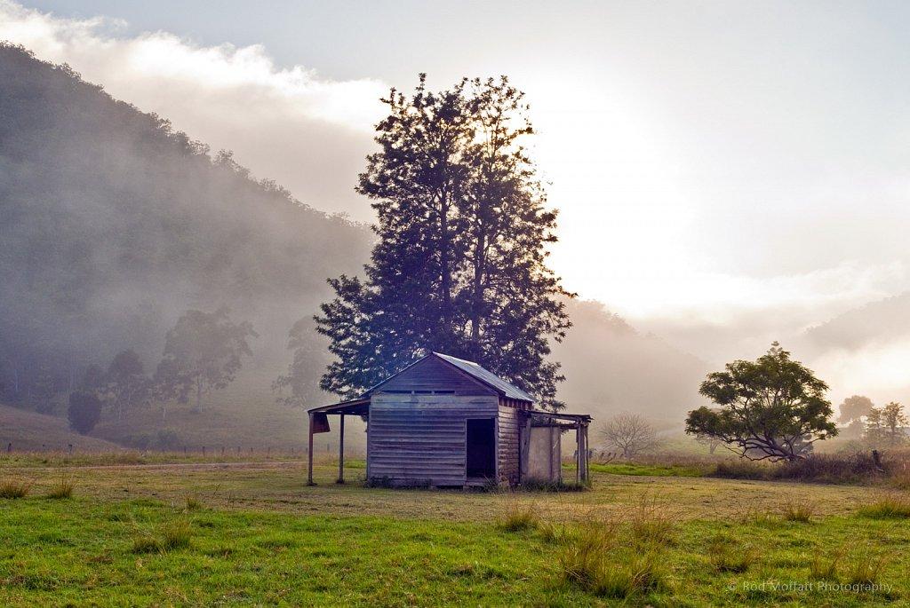 Mist over Dalmorton